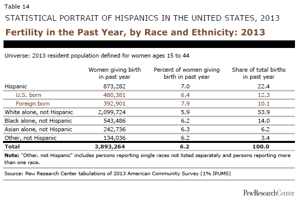 Fertility in the Past Year, by Race and Ethnicity: 2013