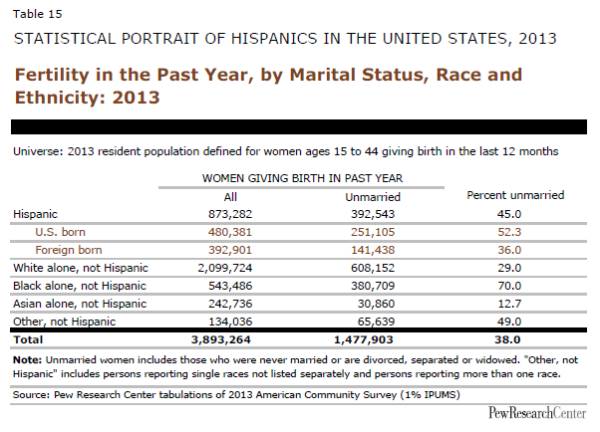 Fertility in the Past Year, by Marital Status, Race and Ethnicity: 2013