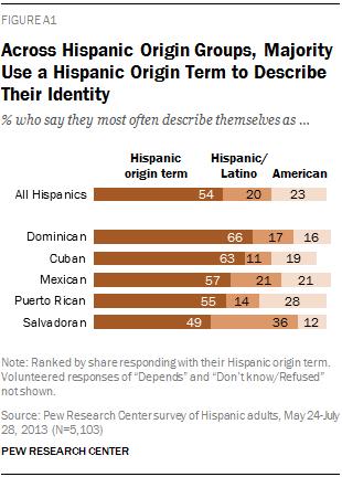 Across Hispanic Origin Groups, Majority Use a Hispanic Origin Term to Describe Their Identity